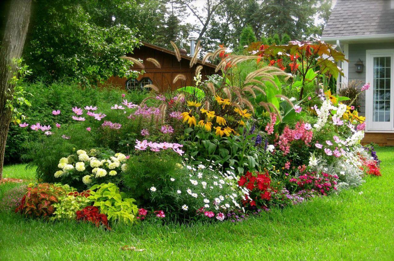 Виды цветников ландшафтный дизайн